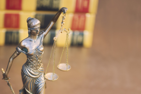 selecting law schools
