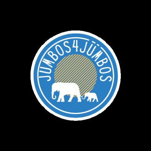 Jumbos4Jumbos Launch Snapshot