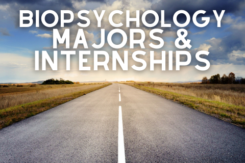 Biopsychology Majors and Internships