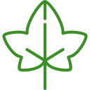 Ivy Research Council Logo