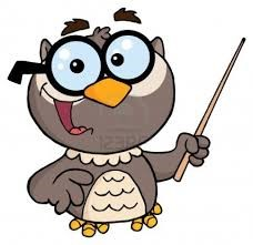 teaching owl