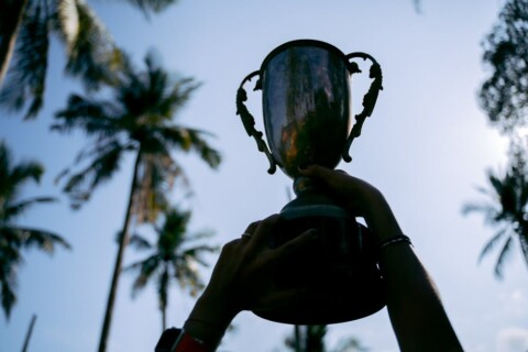 trophy and palm trees