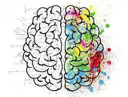 BIO 115 Matters & Mysteries of the Brain