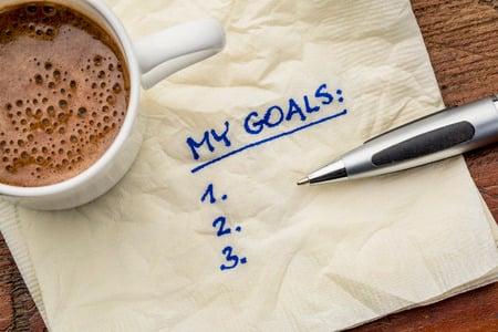 mentor goals