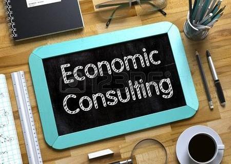 Economic Consulting Resume Example
