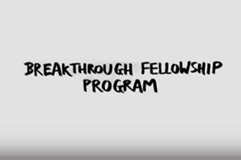 Breakthrough Fellowship Program   Pfizer