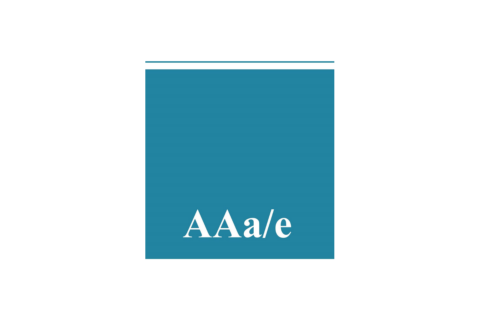 Asian American Architects/Engineers Association