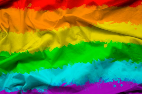 Career Considerations of LGBTQ Students (National Association of Colleges and Employers)