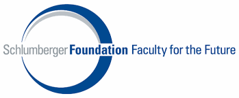 Faculty for the Future Program