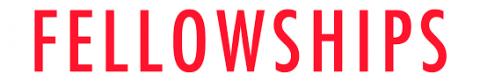 Fellowships Handout 2020