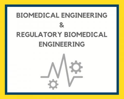Biomedical Engineering & rBME Career Guide