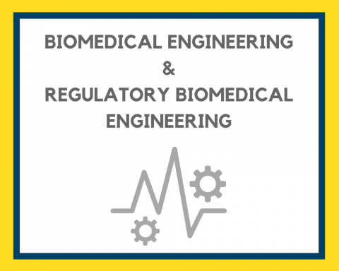 Biomedical Engineering & rBME – Field of Study