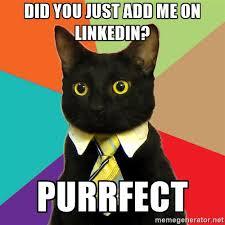 Cat linkedin