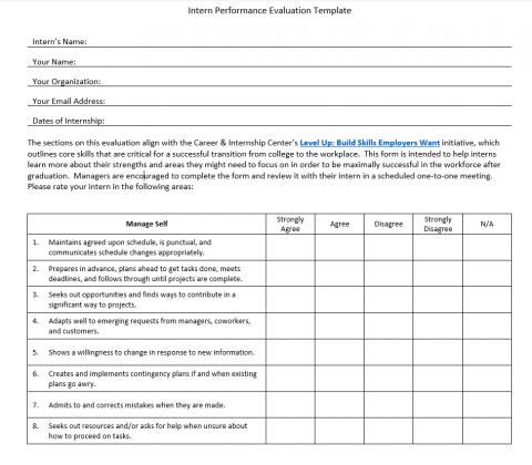 Intern Performance Evaluation Template – intern version
