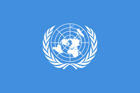 United Nations image