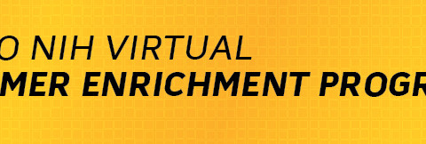 2020_Virtual_Summer_Enrichment_Program_Banner
