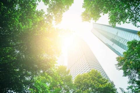 environmental-career-options