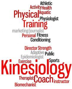 kinesiology-wordle-244×300