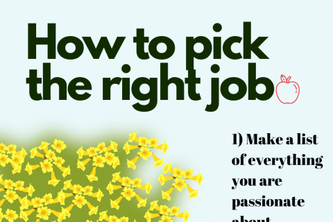 How to pick the right job