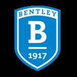 Bentley TEST Logo (from Handshake)