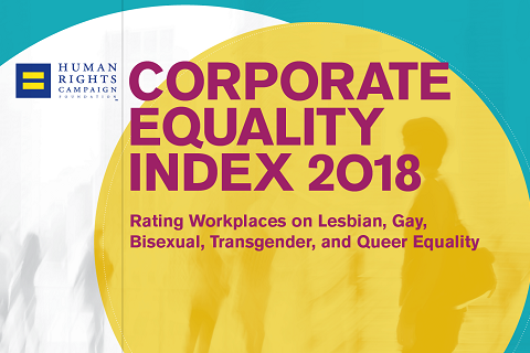 Rating Workplaces on LGBTQ Equality