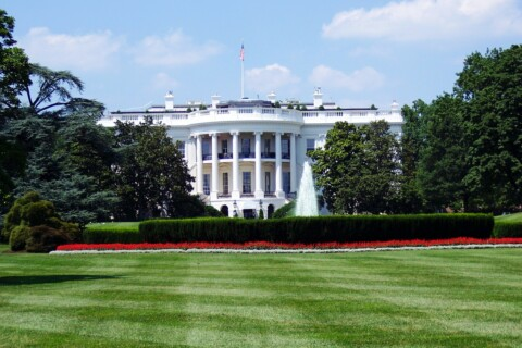 Sample Interview Questions: How Many Gallons Of White House Paint Are Sold In The United States Every Year? thumbnail image