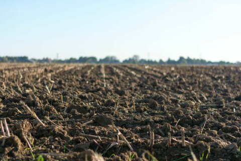 SOIL 210: Introduction to Soil Science