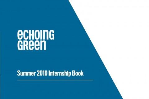 2019 Echoing Green Fellow Internship Book – Summer3 1