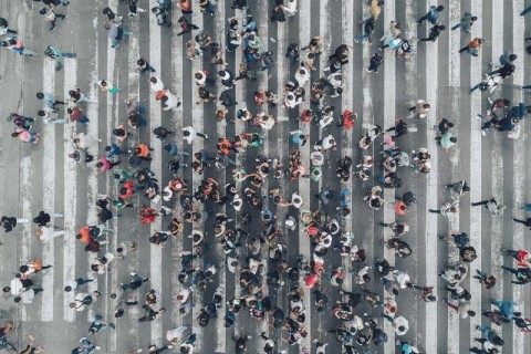 Economic Conditions Snapshot, September 2019: McKinsey Global Survey results – McKinsey Insights thumbnail image