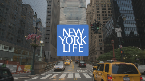 NEW YORK LIFE INSURANCE & INVESTMENTS