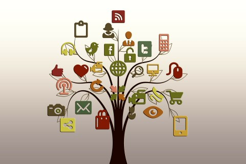 networking-tree-480×320