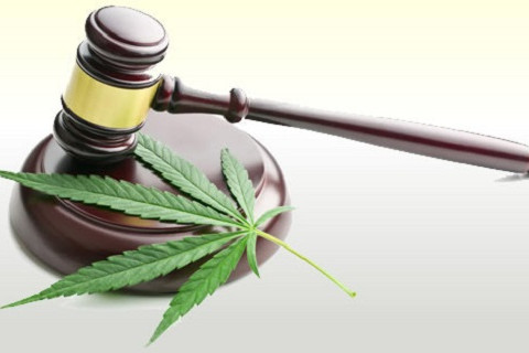 marijuana-gavel-248972516_1x