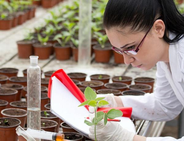 Biology Job Plants