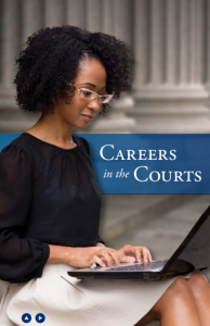 Careers in the NY Courts