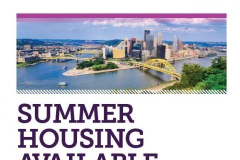 carlow summer intern housing