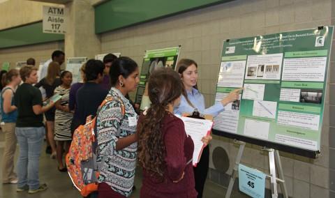 MSU Undergraduate Research