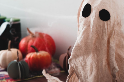 How Ghosting An Employer Can Come Back to Haunt You thumbnail image