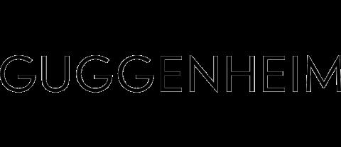 Guggenheim Museum – NYC – Internships