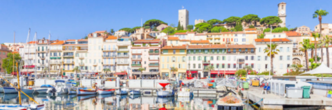Art and Culture in Provence