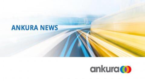 Ankura Consulting Group, LLC