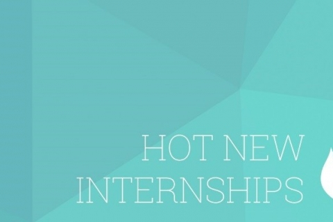 internship picture for blog