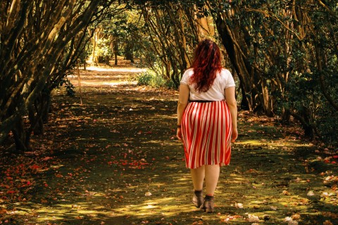 A person walking down a tree-lined path