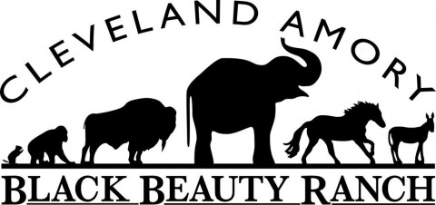 Cleveland Amory Black Beauty Ranch