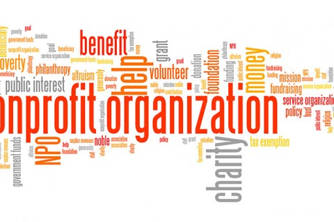 Word Cloud for non-profit orgs.