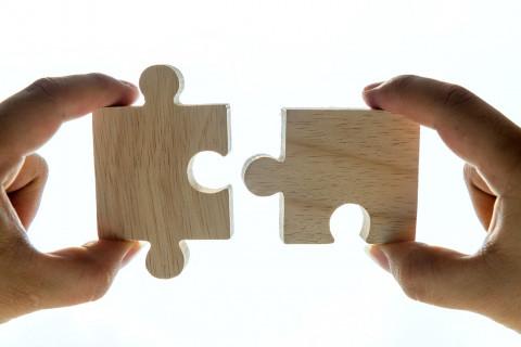 disconnect_puzzle