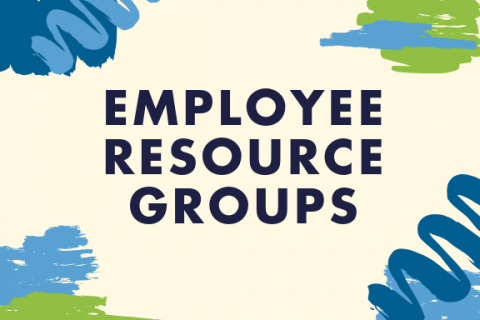 Employee Resource Groups (ERGs)