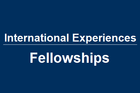International Experiences – Fellowships