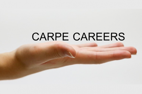 Carpe Careers1
