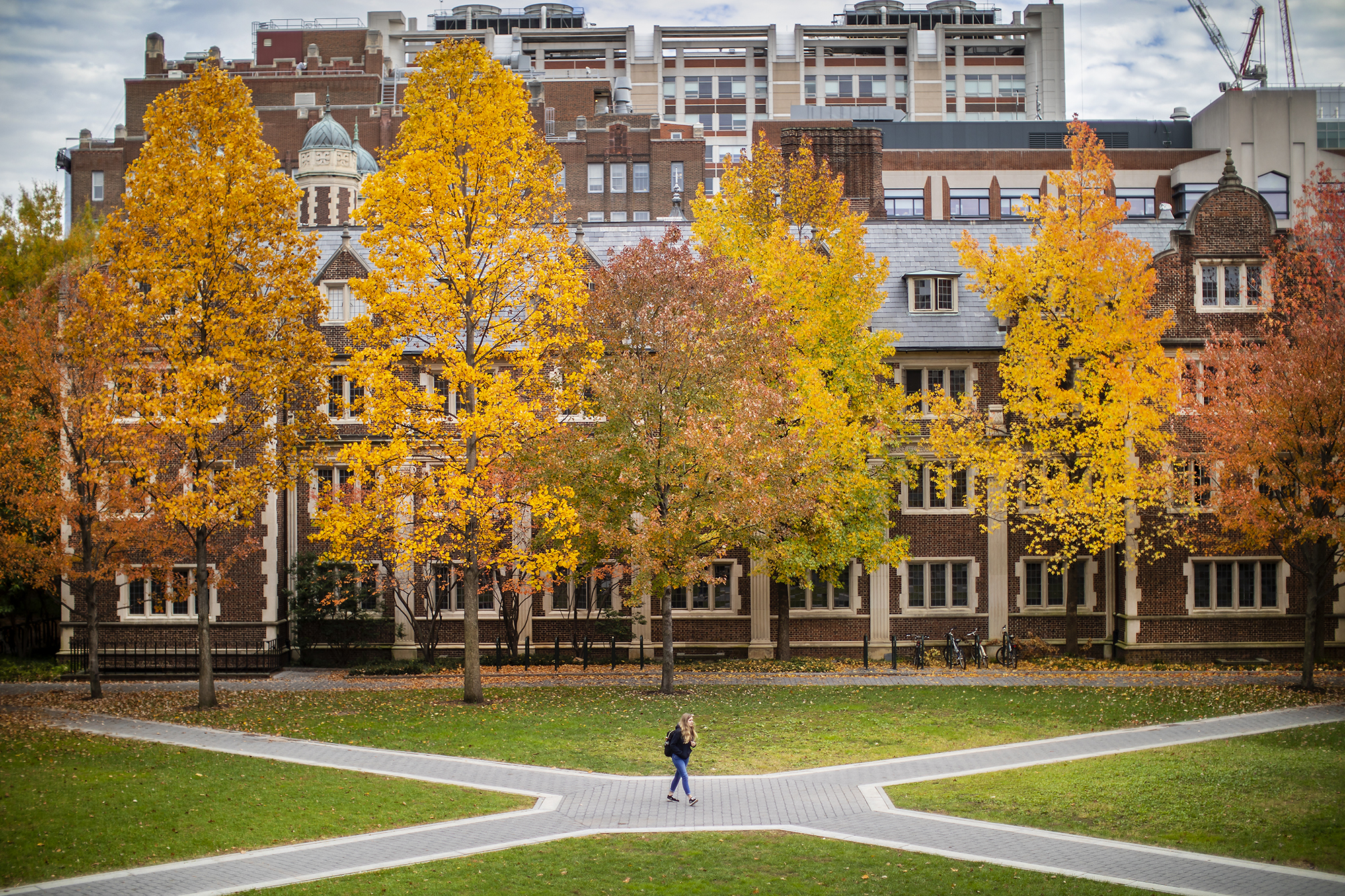 The center of the Quad in fall. A lone figure stands at the center of a four wau crossroads.
