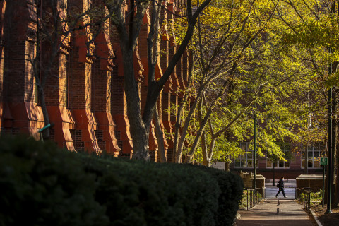 The intricate red brick walls of the Furness Fine Arts building in stark contradt with the bright green leaves of the trees that line the walk in front of it